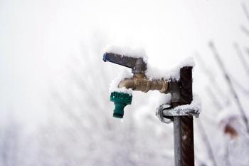 In Haus und Garten - Frostschutz im Winter